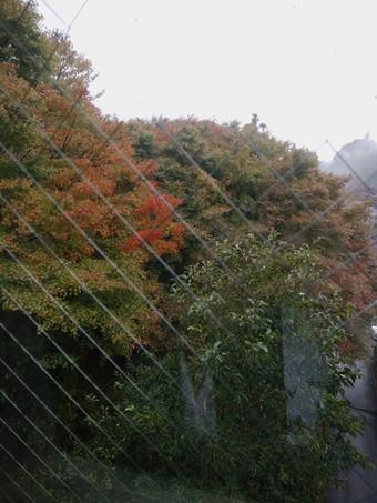 宿の窓からの景観